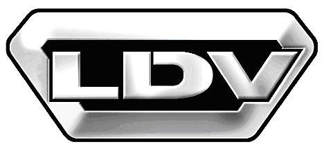 Шторки Лайтово для  LDV