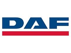 Шторки Лайтово для  DAF