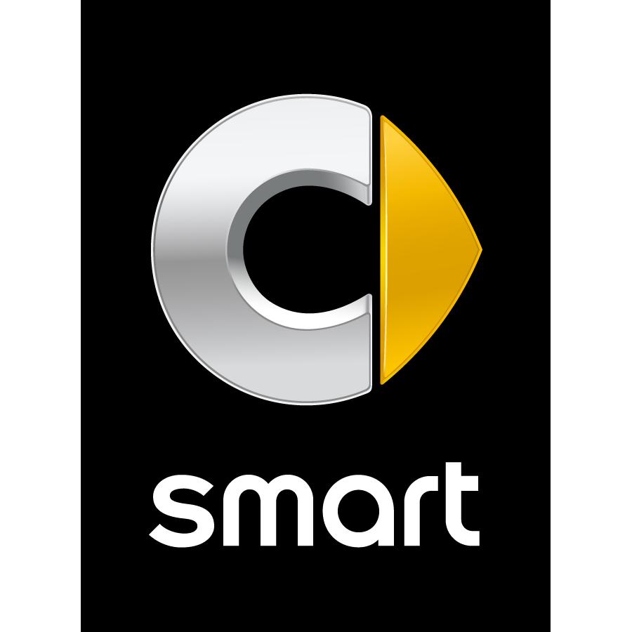 Шторки  для Smart