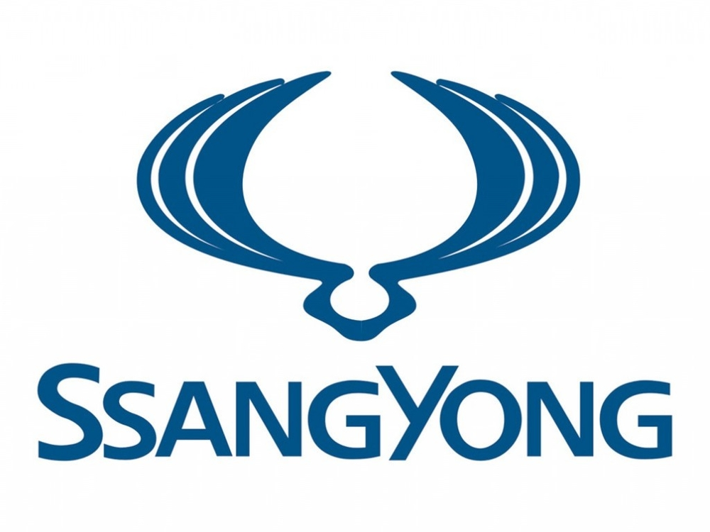 Car window sun screen for Ssang Yong