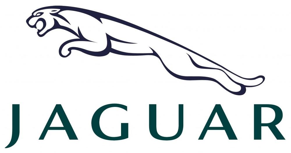 Шторки Лайтово для  Jaguar