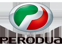Шторки  для Perodua