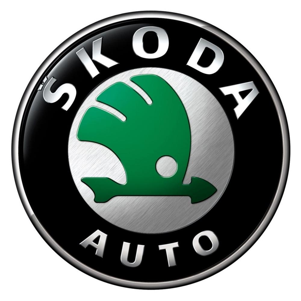 Шторки  для Skoda