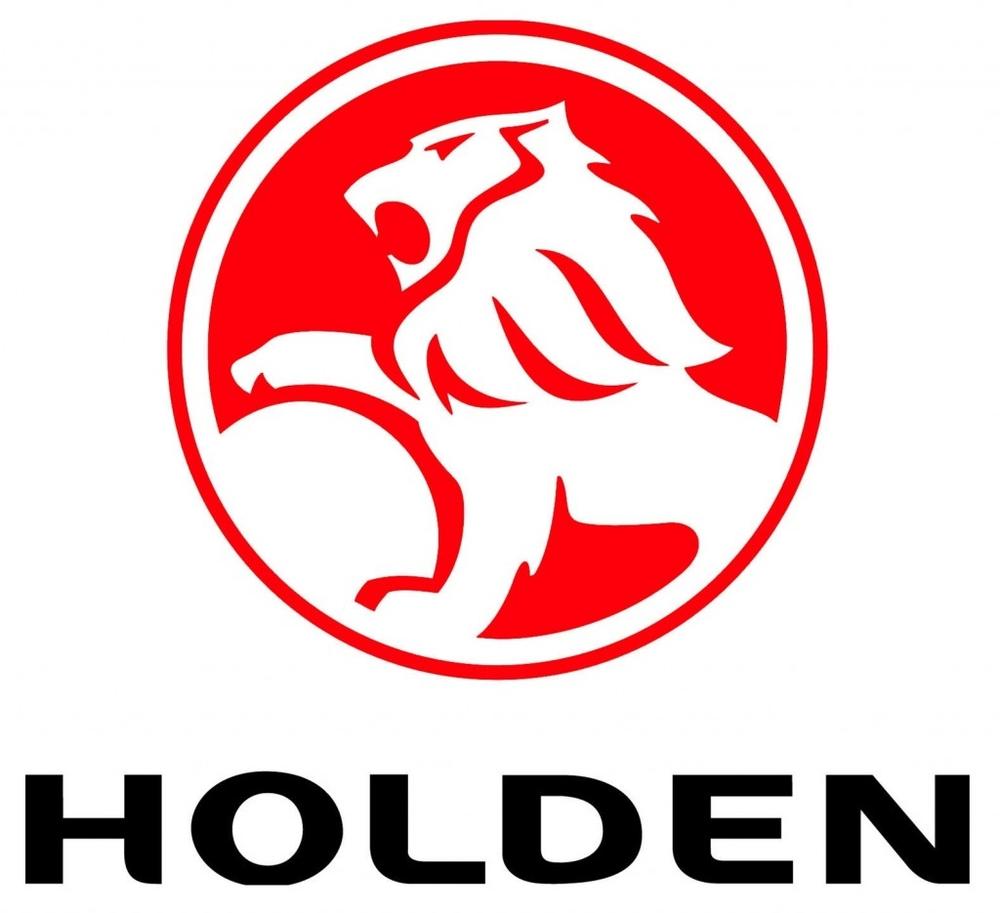 Шторки Лайтово для  Holden
